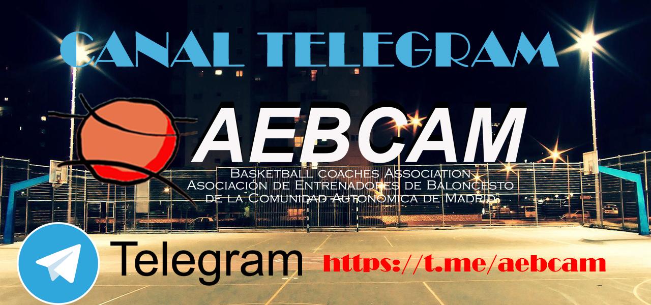 Canal Informativo en Telegram